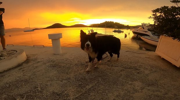 Kitetrip-Chorvatsko-Neretva-sunset-dog
