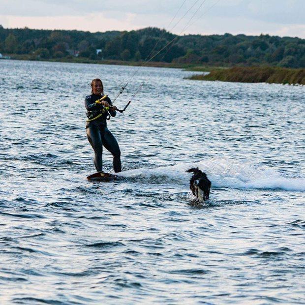 Kiting a pes - Společná kajtovačka na Rujáně