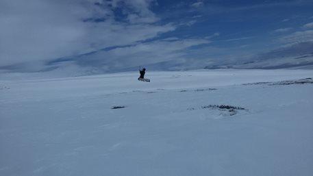 Snowkiting-Hardangervidda-brezen-2016-