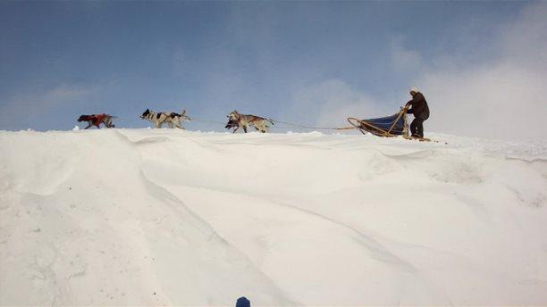 Harakiri_snowkiting_trip_Norsko_Geilo_psiska.jpg